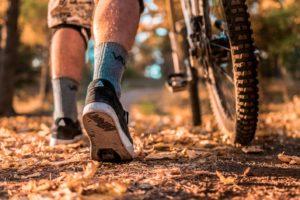 Downhill Vlčka Trails Bikepark Trutnov